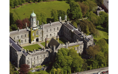 Undergraduate Studies in Ireland